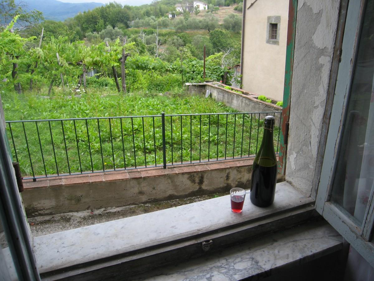 Hemgjort jordgubbsvin Lorano Italien