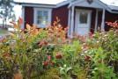 Lodge 38 Stugbyn i Sverige AB Exteriör med förstukvist